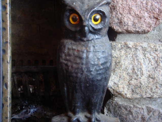 these beautiful iron owls stand on each side of the fire place they have been there so long, maybe my grandma could tell me who's mothers they were.